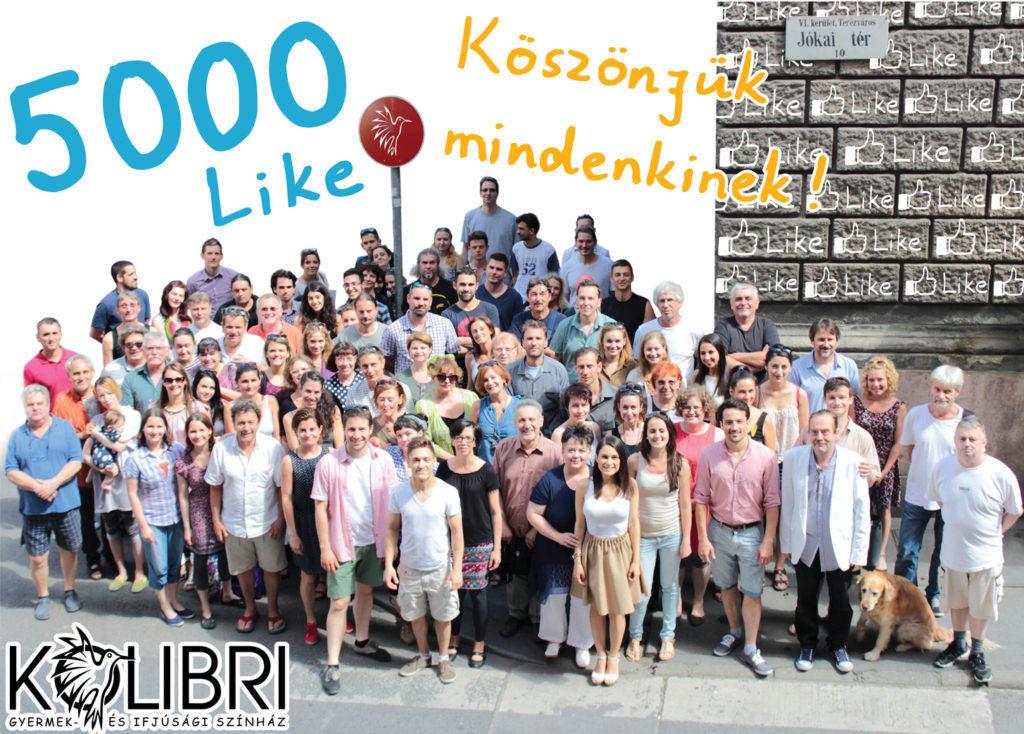 kolibri-5000-like-ok